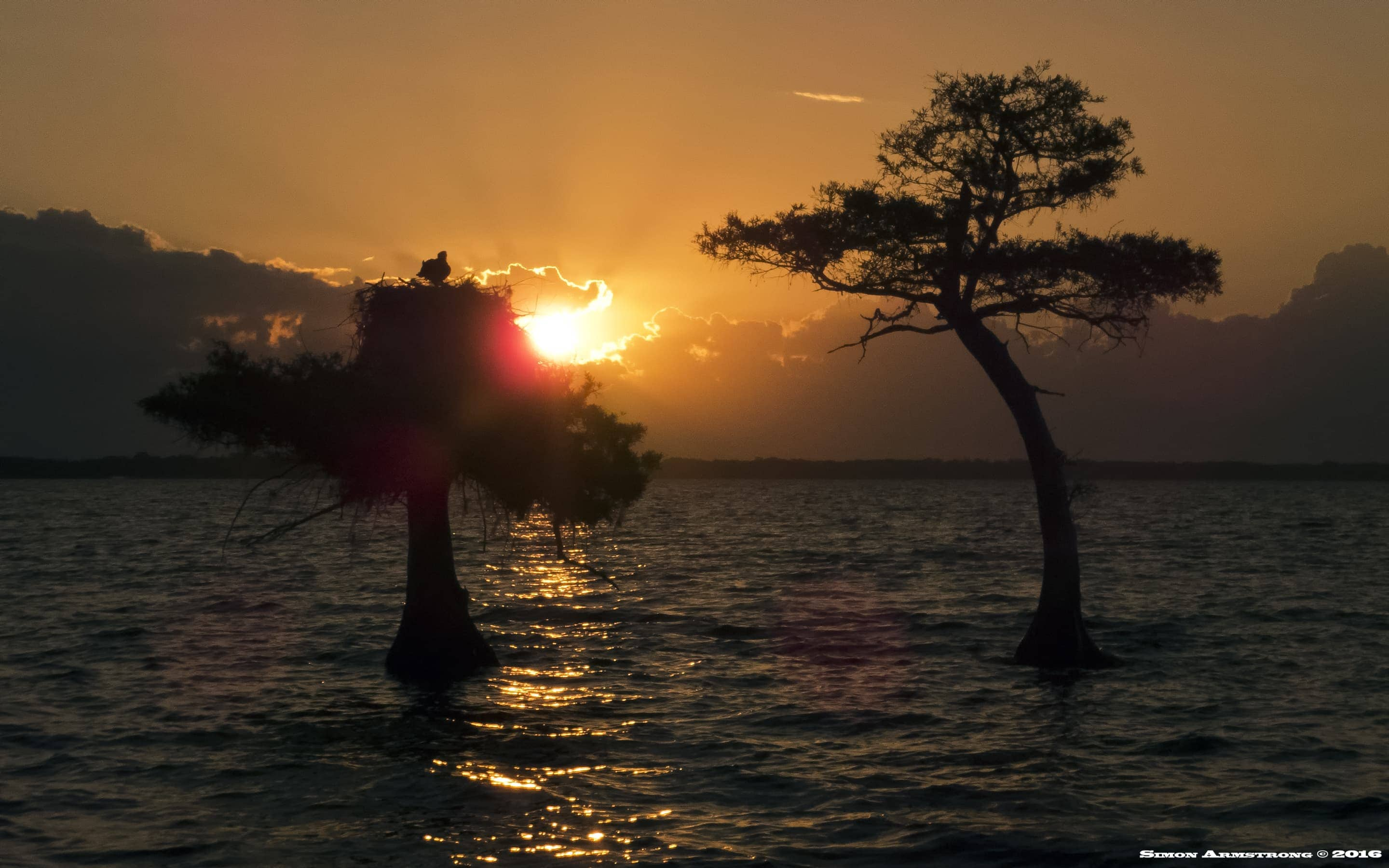 Sunrise on Blue Cypress Lake - photographed on the NaturesLens Ospreys of Blue Cypress Lake Photography Holiday