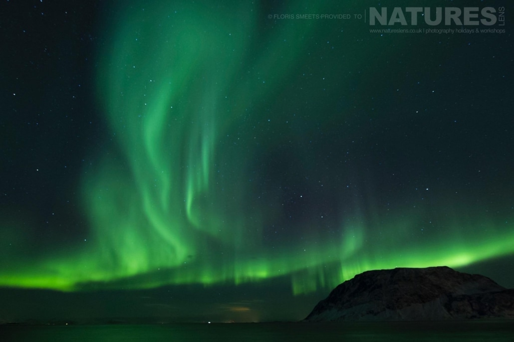A display of the northern lights above Lofoten - photographed during a Winter in Lofoten Photography Holiday