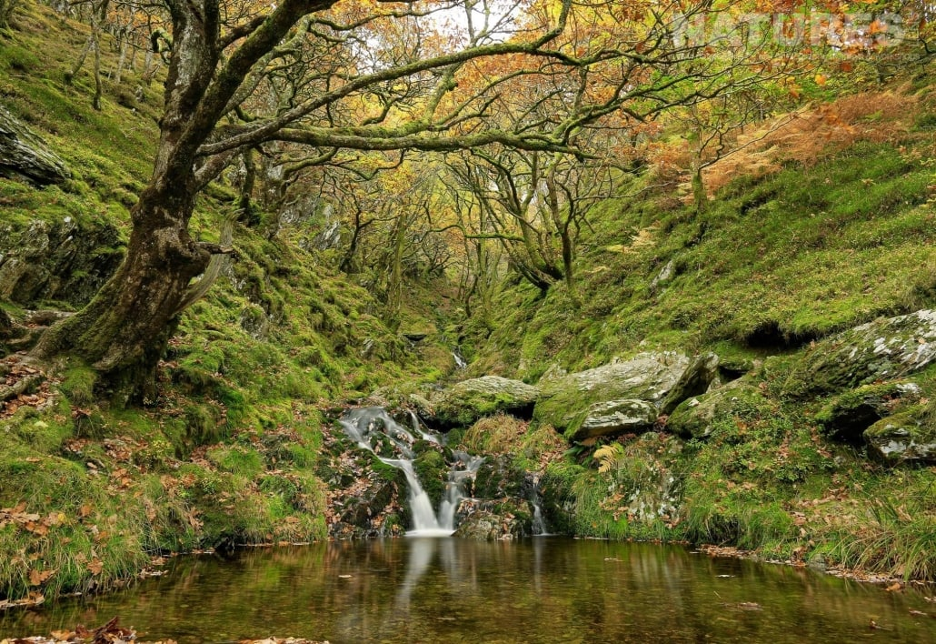 Waterfall photography in the Elan Valley - typical of the type of image captured on the NaturesLens Mid-Wales Landscapes Photography Workshop