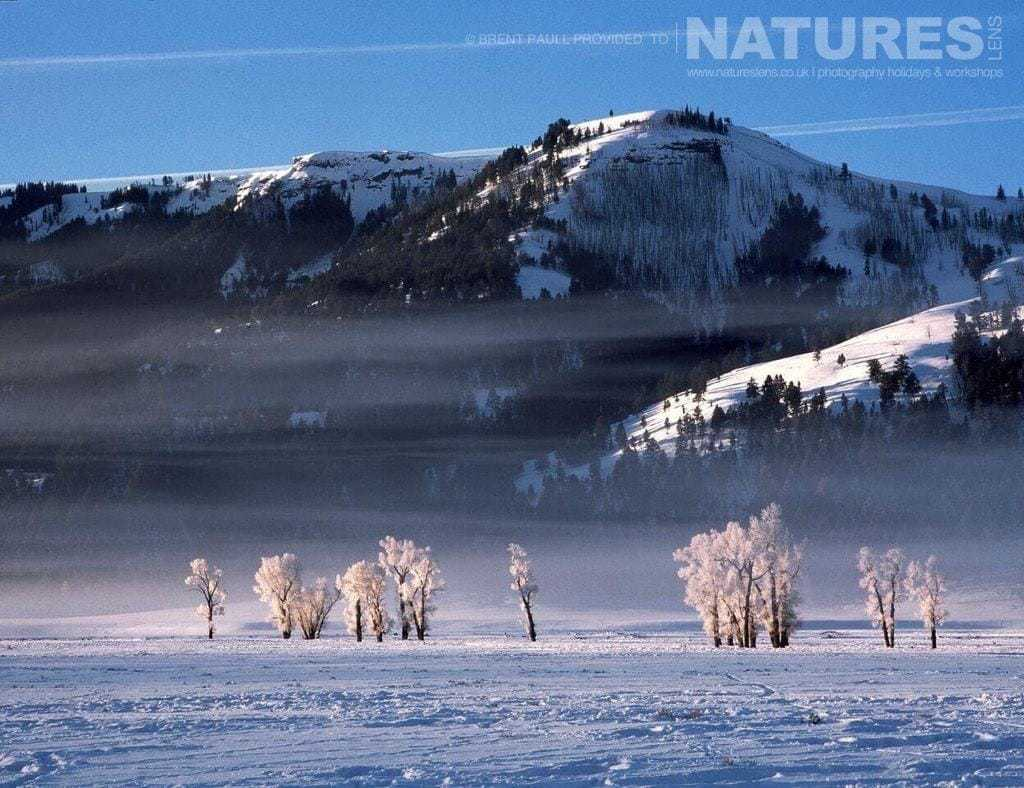 The snow covered landscape of the Tetons - typical of the type of image to be captured on the NaturesLens Utah & Yellowstone in Winter Photography Holiday