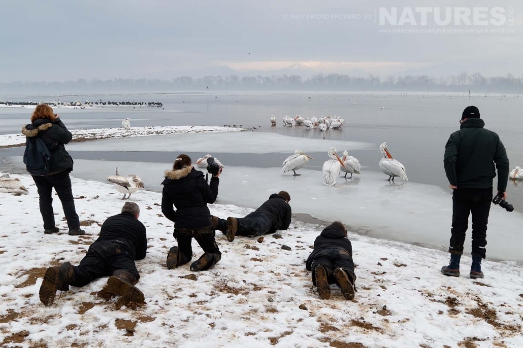 What goes on behind the shot, some of the second group photographing the pelicans on Lake Kerkini photographed on the NaturesLens Dalmatian Pelicans Photography Holiday