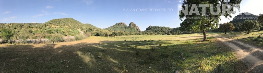 A panorama of the Adamuz landscape photographed on one of the pair of NaturesLens Wildlife Photography Holidays to capture images of the Birds of Spain