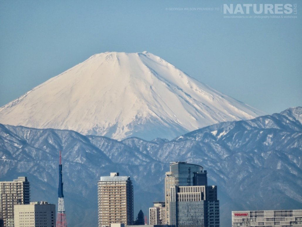 Mount Fuji captured NaturesLens during the Winter Wildlife of Japan Photography Holiday