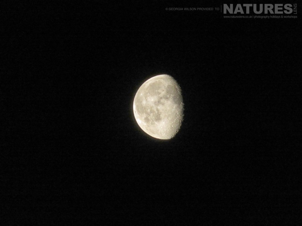 Perfect moon captured NaturesLens during the Winter Wildlife of Japan Photography Holiday