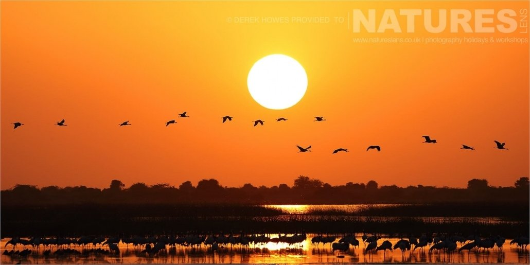 Sunset over one of the lakes in the Kutch area an image captured during a Natureslens Little Rann of Kutch Photography Holiday