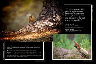 Wildlife Photographic Often Features Articles From NaturesLens, Such As The Asking Questions Of Pui Hang