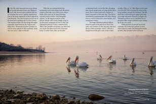 Wildlife Photographic Often Features Articles From NaturesLens, Such As The One On Lake Kerkini's Pelicans