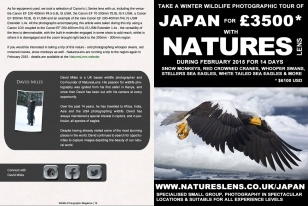 Wildlife Photographic Often Features Articles From NaturesLens, Such As This One On Stellars Sea Eagles On The Pack Ice In Japan